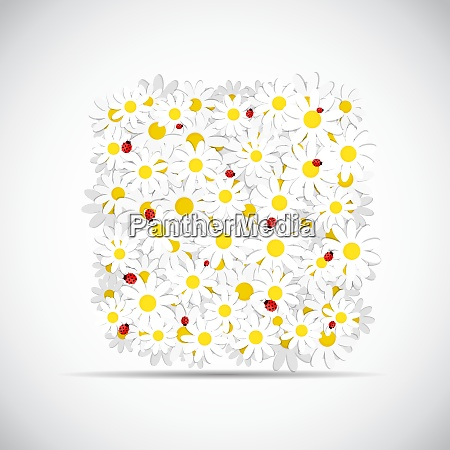 flora daisy design vektor illustration eps10