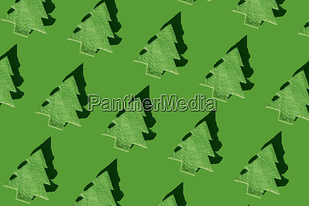 rows of green christmas trees on