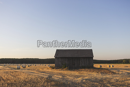 barn on a field at harvesttime