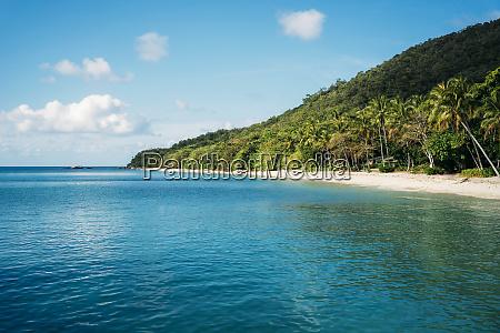 australien fitzroy island national park tropical