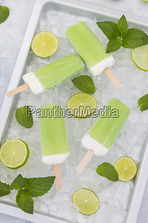 lime mint popsicles slices of limes