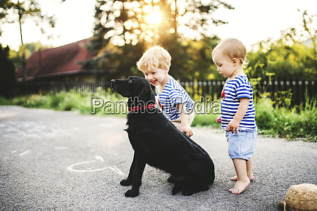 toddler and his little sister playing