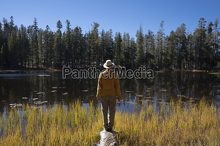 usa california yosemite national park hiker