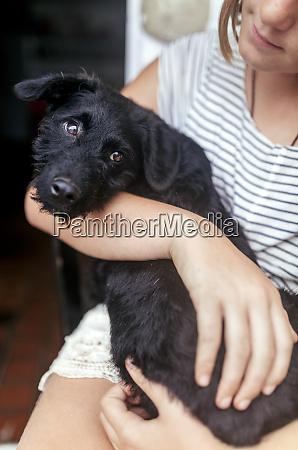 portrait of black puppy on girls