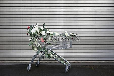 einkaufswagen mit weissen kunstblumen verziert