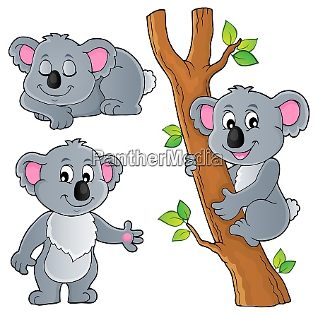 koala theme collection 1
