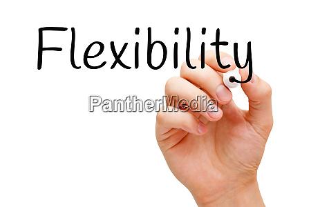 wort flexibilitaet handgeschrieben mit schwarzem marker