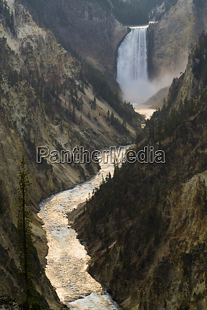 yellowstone river and falls yellowstone national