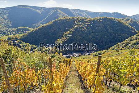 germany rhineland palatinate ahr valley reimerzhoven