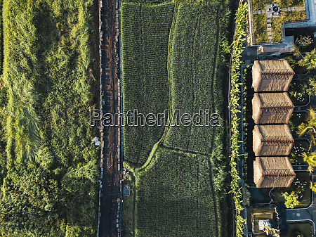 indonesia bali ubud aerial view of