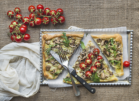 ristic pilz pilze quadratische pizza mit