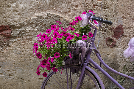 italien altes fahrrad mit blumen
