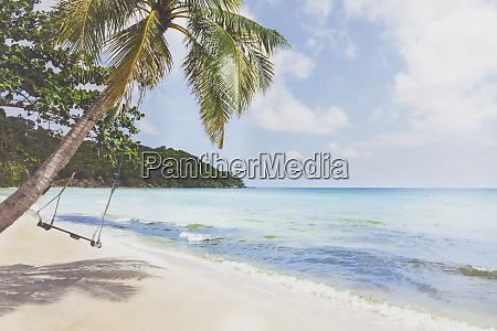 vietnam, , phu, quoc, , beach, , swing, on - 26535934