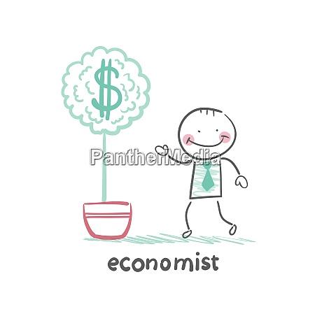 OEkonom waechst einen geldbaum