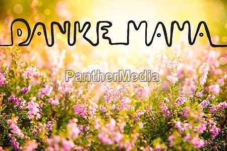 erica flower field calligraphy danke mama