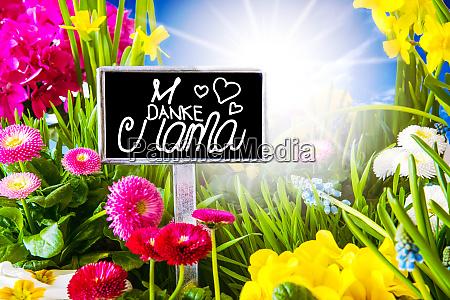 sunny spring flower calligraphy danke mama