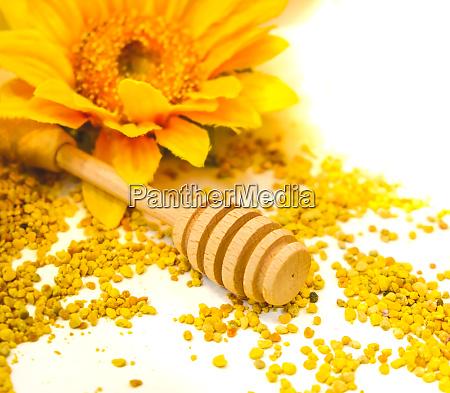 propolis granulat honig tropf hintergrund nieselregen