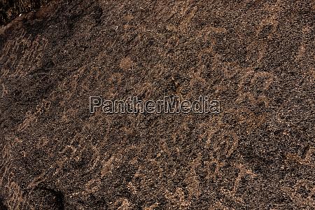 vorislamische felsinschriften in wadi massal provinz
