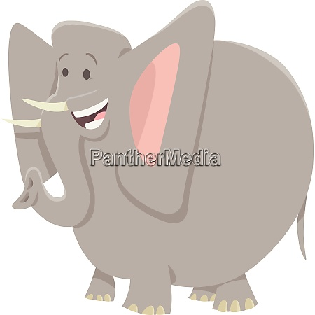 funny elephant cartoon animal character