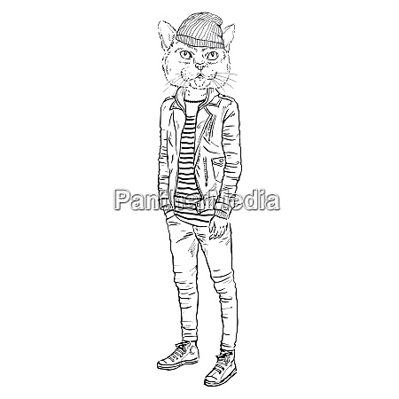 fashion illustration of cat dressed up
