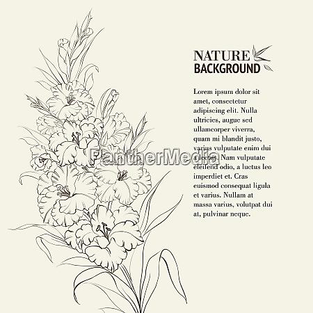 iris blumen mit textplatz vektor illustration