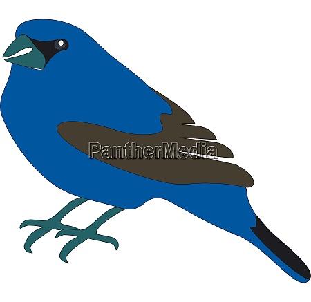 blauer vogel in farbe 01