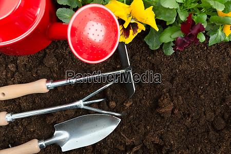 gartengeraete auf demboden pflanzen fruehling stiefmuetterchen