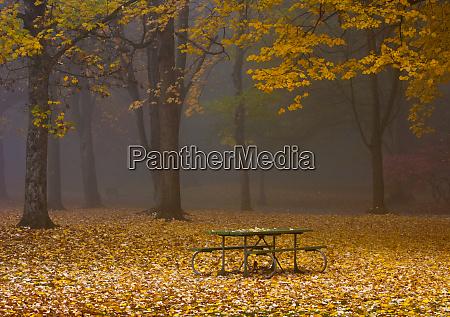 picknicktisch im park