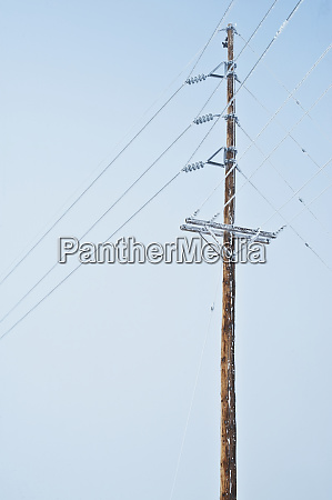 power pole covered in frost
