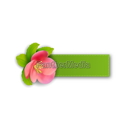 illustration special spring offer sticker with