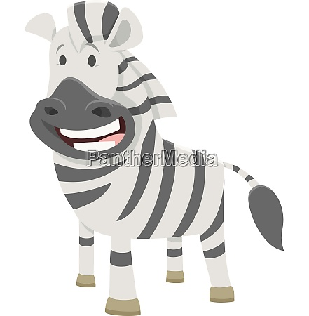 african zebra cartoon animal character