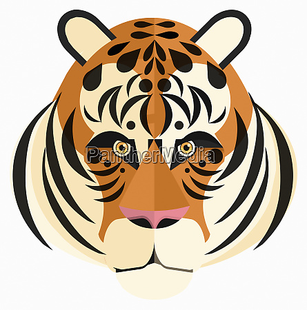 nahaufnahme des gesichtes des tigers das