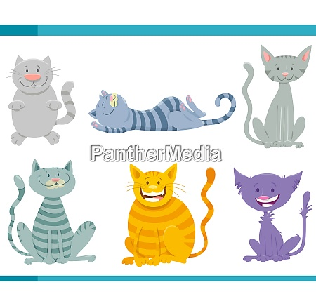 cats and kittens funny characters set