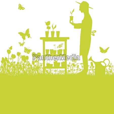 gardener with rearing plants in the