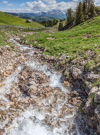 mountain stream on the alpe di