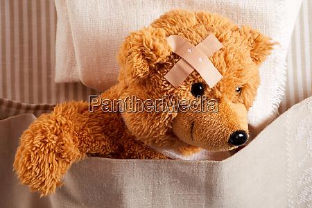 cute little teddy bear with head