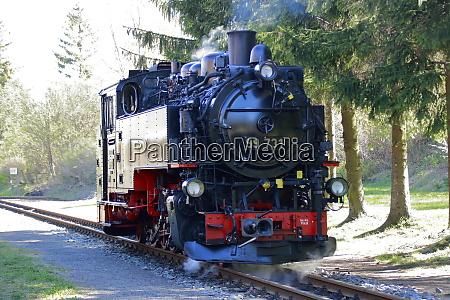 dampflokomotive der schmalspurbahn zittau im bahnhof
