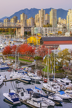 high angle view of boats docked