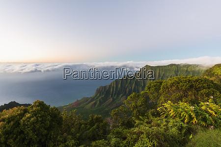 usa hawaii kokee state park kokee