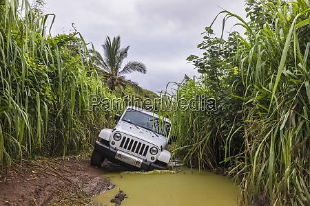 usa, , hawaii, , kauai, , off-road, vehicle, on - 26915718