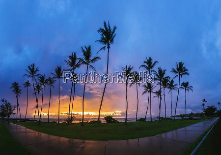 usa hawaii kauai pacific ocean kapaa