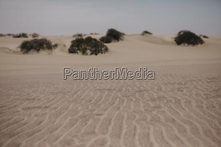namibia walvis bay sand in namib