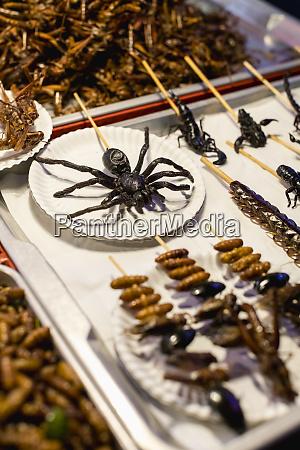 thailand bangkok insekten zum verkauf auf
