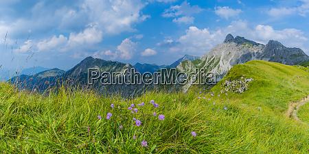 germany bavaria allgaeu allgaeu alps armeria