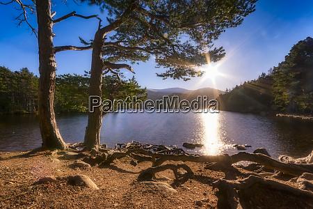 united kingdom scotland highlands cairngorms national