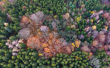 germany baden wuerttemberg swabian forest fils