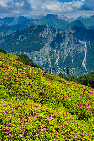 germany bavaria allgaeu allgaeu alps view
