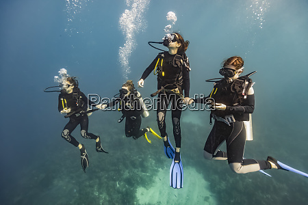 scuba dykkere i roatan marine park