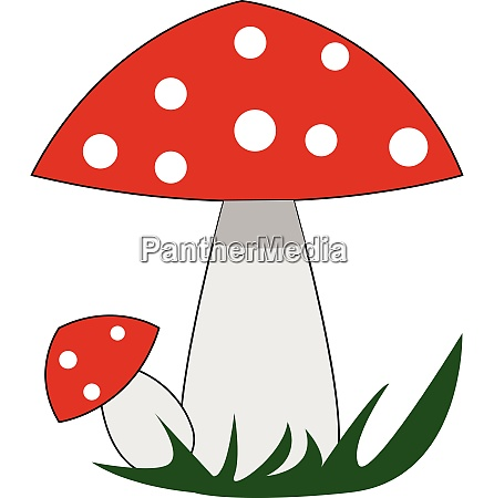 red mushrooms with white polka dots