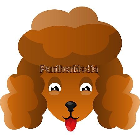 orange poodle illustration vector on white